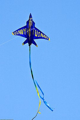 A blue Phantom Jet kite. Pretty cool from a kid's perspective!