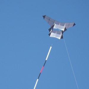 A custom Cody box kite seen at the Adelaide International Kite Festival.