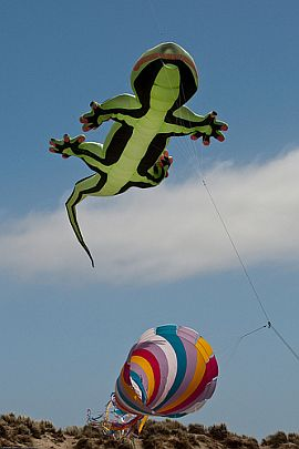 Cool Kites - A Small But Intriguing Gallery