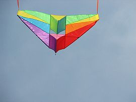 A cool and colorful Delta Conyne kite in flight.