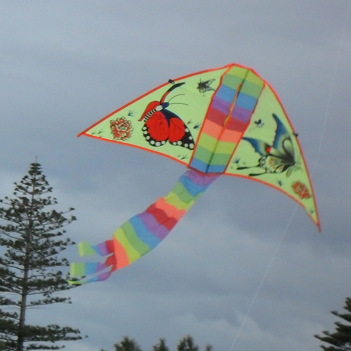 Kite Decoration Ideas For Competition