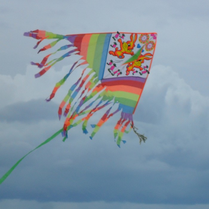 Delta kite with 2 rabbits for decoration.