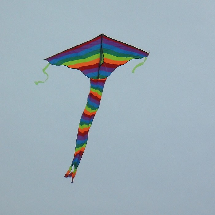 Delta kite with stripes lining up with the leading edges.