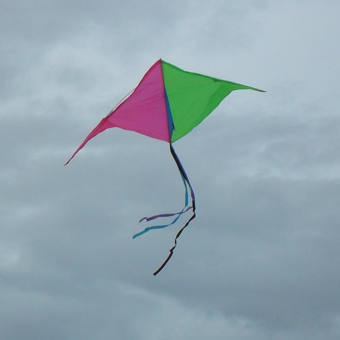 Simple 2-color Delta.