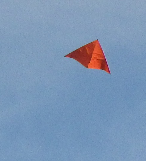 The 2-Skewer Delta kite in flight.