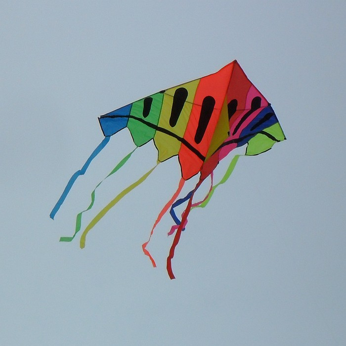 Delta kite with bold vertical stripes.
