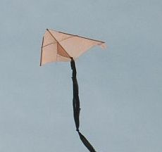 The latest 1-Skewer Delta kite.