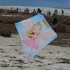 Fairy kite