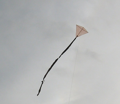 The 1-Skewer Diamond kite in flight.