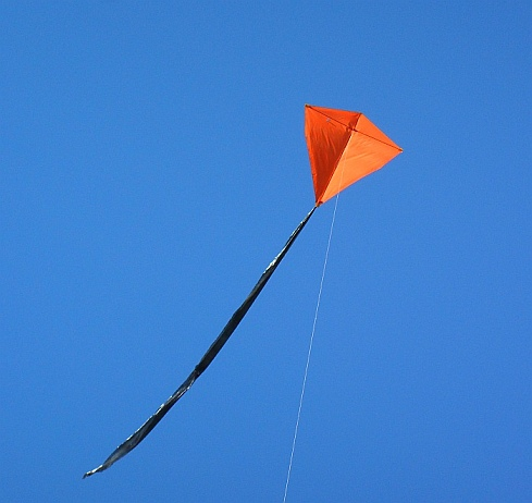 The 2-Skewer Diamond Kite in flight.