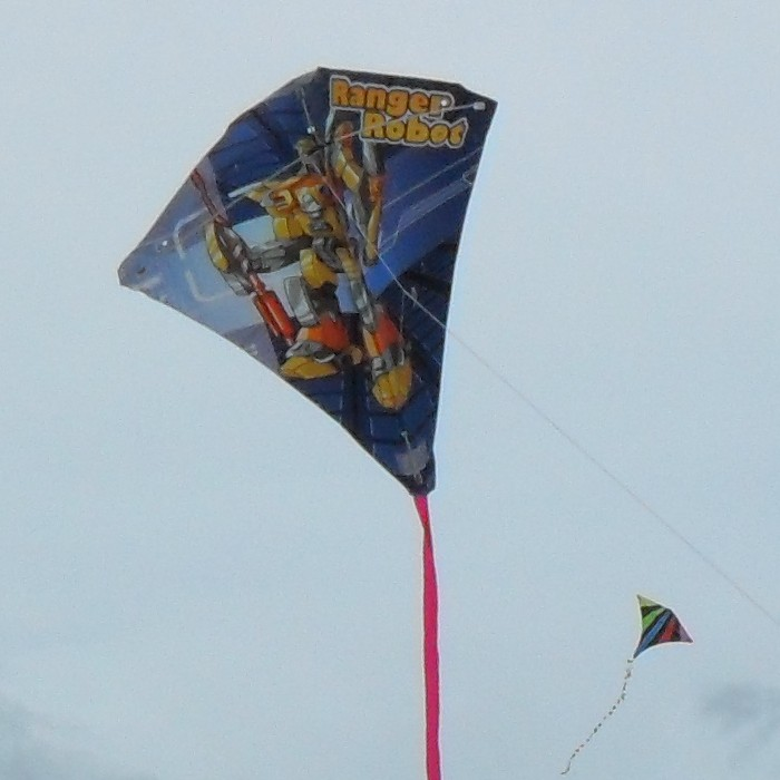 Ranger Robot Diamond kite.