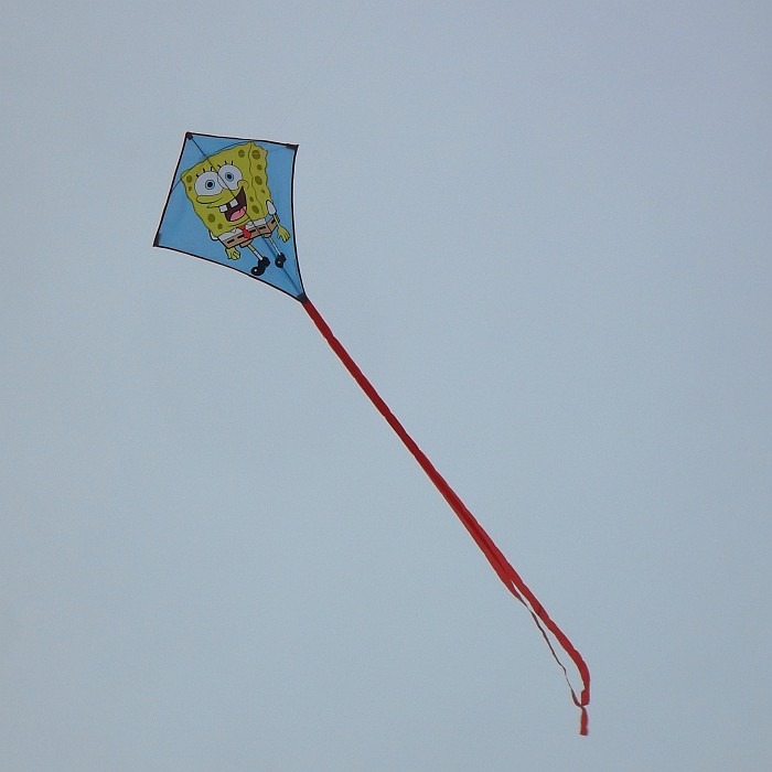 A SpongeBob Diamond kite.