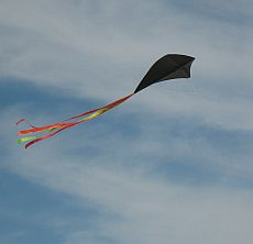 Kites stand out against the sky when colored black like this one
