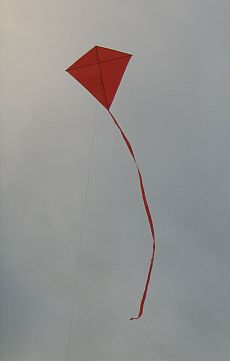 A very quick and easy Diamond shape kite - the MBK Simple Diamond