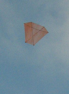 Dowel Barn Door kite - high up.