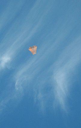 Dowel Barn Door Kite - high up