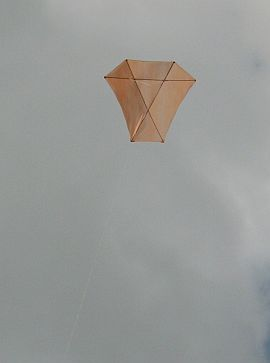 Our Dowel Barn Door kite in the air.