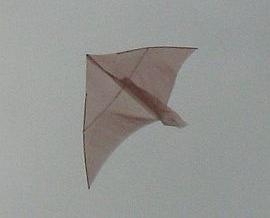 The very first Dowel Delta kite in flight.