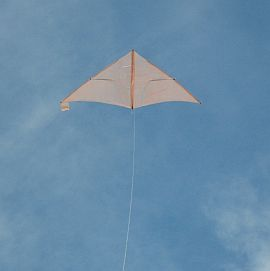 The Dowel Delta kite