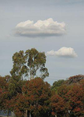 Dowel Rokkaku Kite - Cumulus clouds