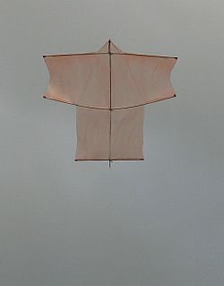 The Dowel Sode kite in flight.
