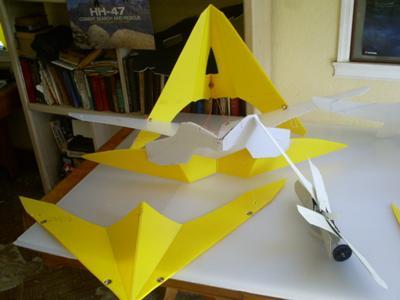 Dual Wing Delta Kites