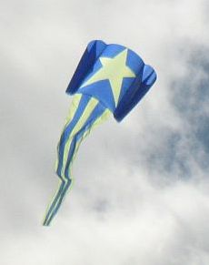 A big Sled kite with ram-air spars.