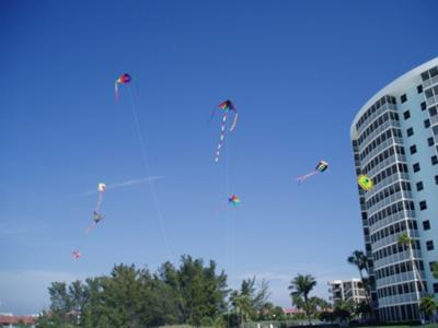 Kites on Siesta Key Beach