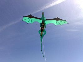 An amazing home-built 3D Dragon kite.