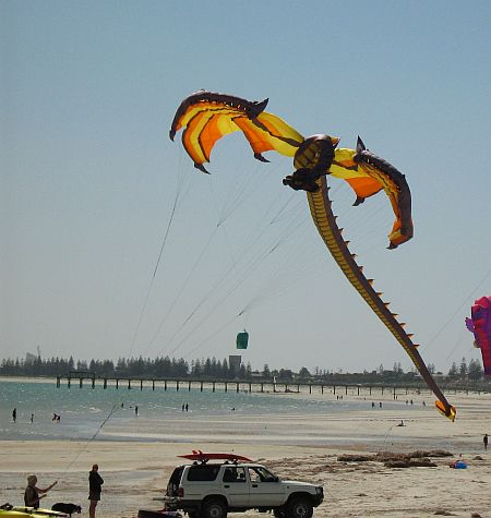 Of all the great kites we saw in 2008, this Dragon Inflatable was my favorite!