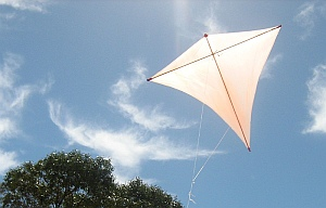 A homemade kite in the West is often a Diamond.
