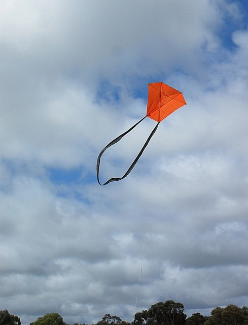 The 2-Skewer Barn Door kite in flight.