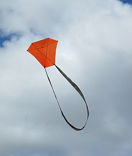 Learn how to make a Barn Door kite like this one.