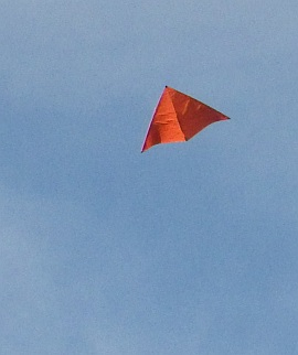 Learn how to build a Delta kite like this one.
