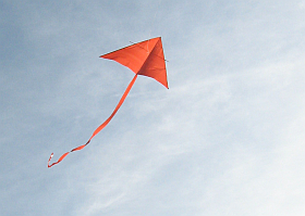 The MBK Simple Delta in flight.