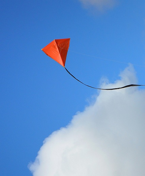 The 2-Skewer Diamond in flight.