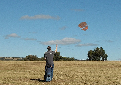 The 2-Skewer Dopero kite in flight.