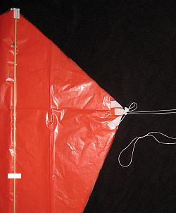 The Simple Sled kite - bridle 2