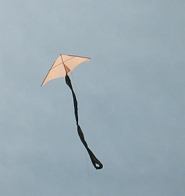 Learn how to make a Delta kite from bamboo skewers and plastic.