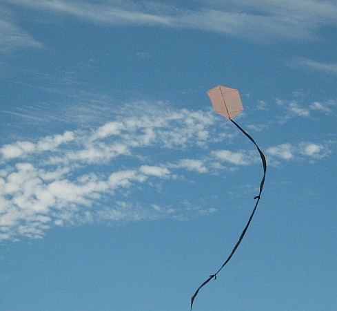 The MBK 1-Skewer Rokkaku kite in flight.