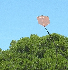 Learn how to make a Rokkaku kite like this one!