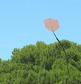 Learn how to make a Rokkaku kite like this one!