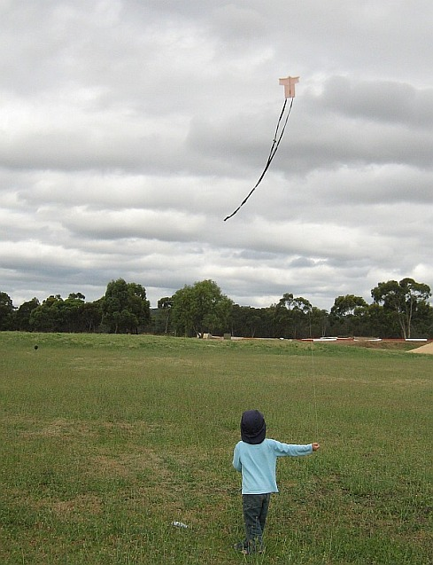 The little 1-Skewer Sode kite in flight on an overcast day.