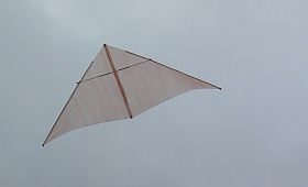 A big dowel and plastic Delta kite.