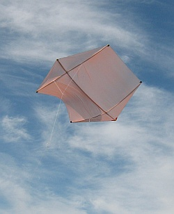 A big Rokkaku kite with bowed dowel spars.
