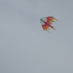 light-wind delta kite