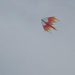 light-wind delta kite