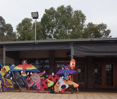 kites for sale at henley grange memorial oval