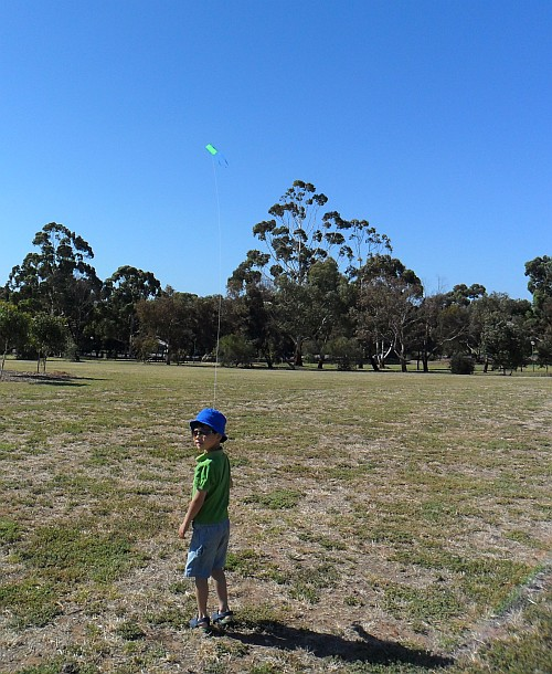 A 5 year old flying a small retail Sled kite.