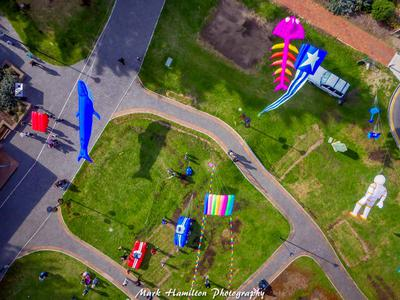 Aerial view of large inflatables,taken by a member of our local kite club.